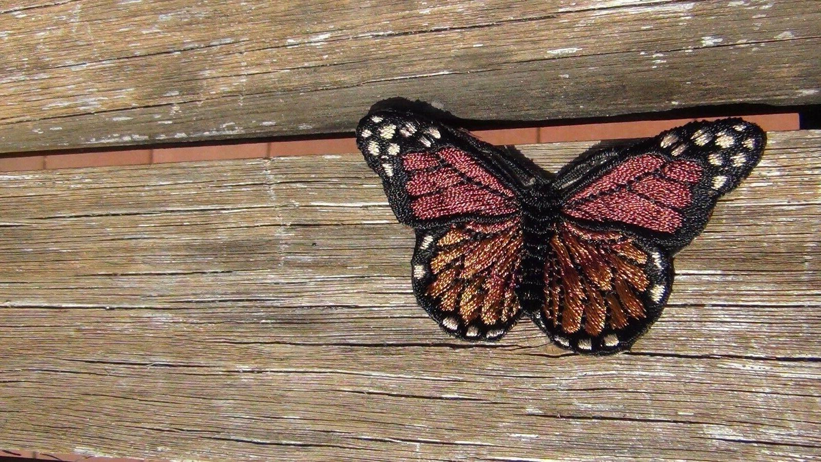 butterfly different color Iron x inch